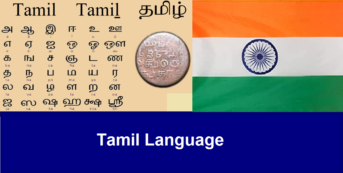 Tamil - SL Grade 8 - Any Time Class – 2nd Language